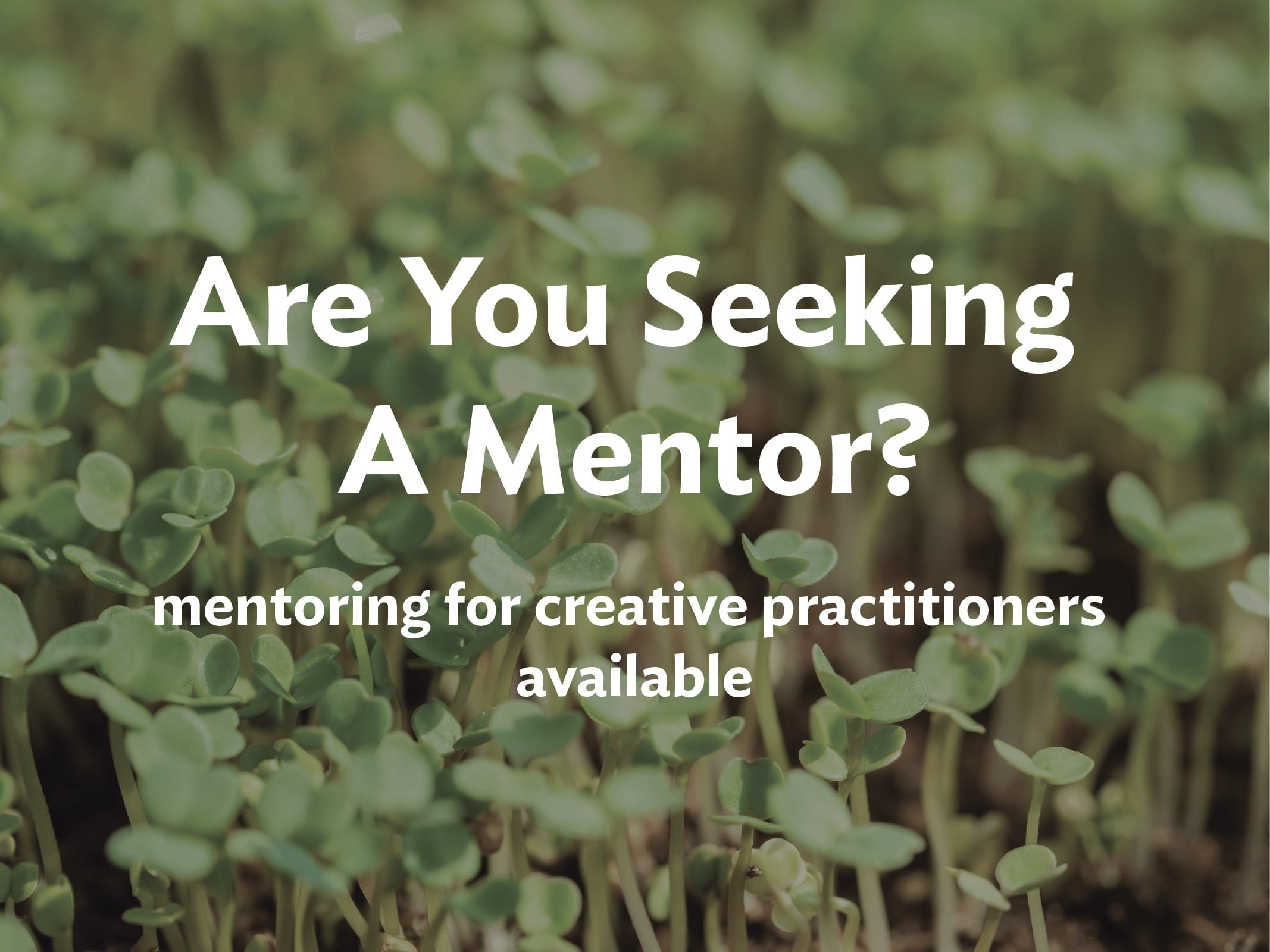 Do you need a mentor?